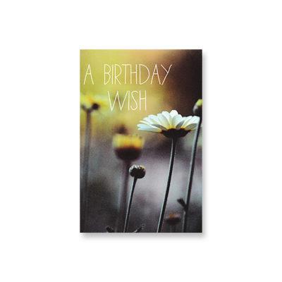 POSTKARTE A Birthday Wish