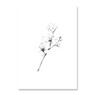 POSTKARTE Inkylines Kirschblüte