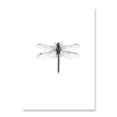 INKYLINES Postkarte Libelle
