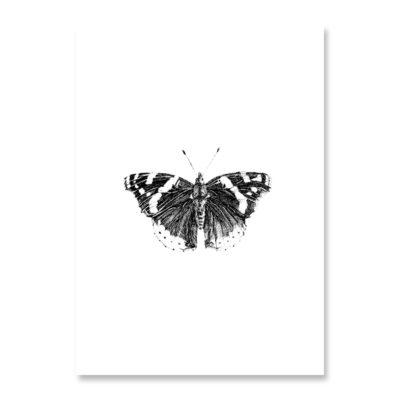 POSTKARTE Inkylines Schmetterling