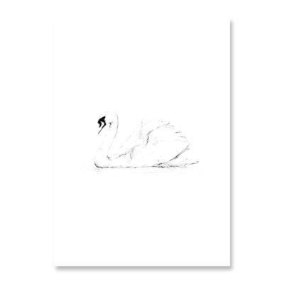 INKYLINES Postkarte Schwan