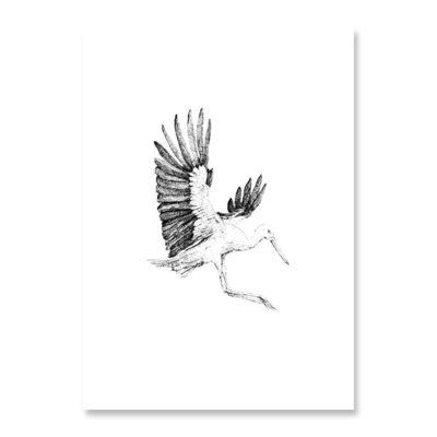 INKYLINES Postkarte Storch