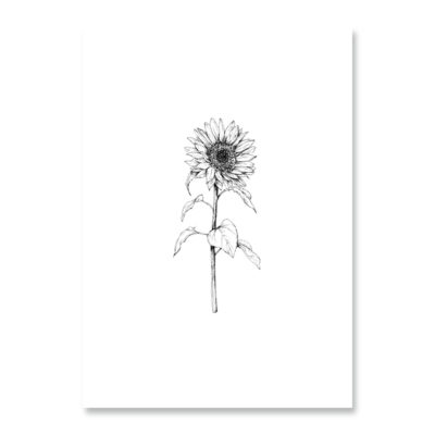 POSTKARTE Inkylines Sonnenblume
